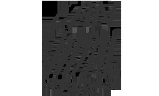canVidal